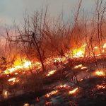 """Članovi DVD """"Stari Vitez"""" ugasili šumski požar u Busovači"""
